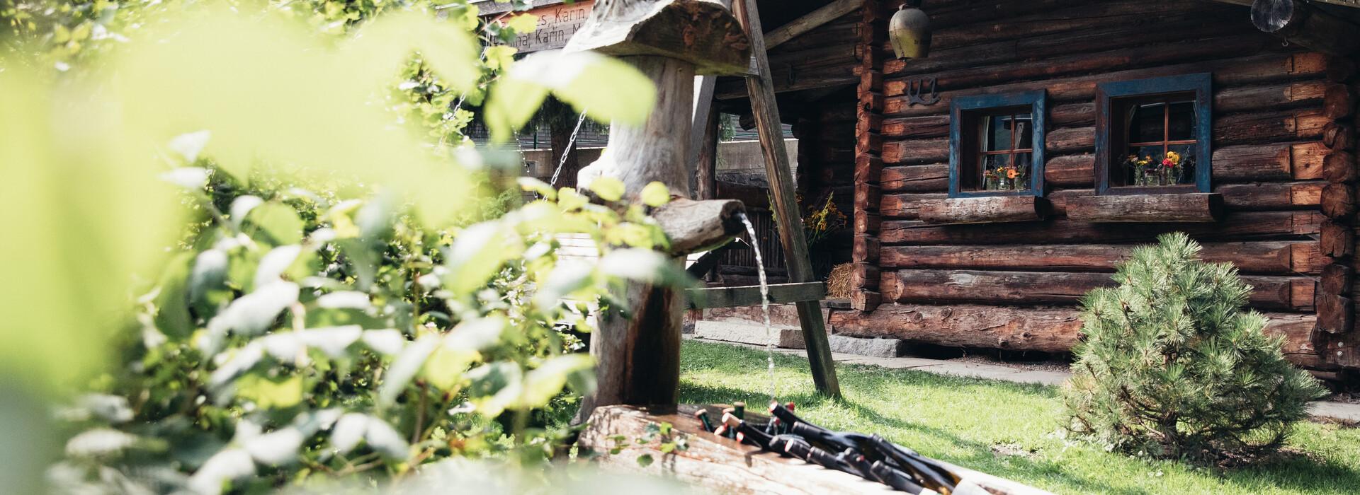 Blick auf die traditionelle Nessleralm mit Holzbrunnen
