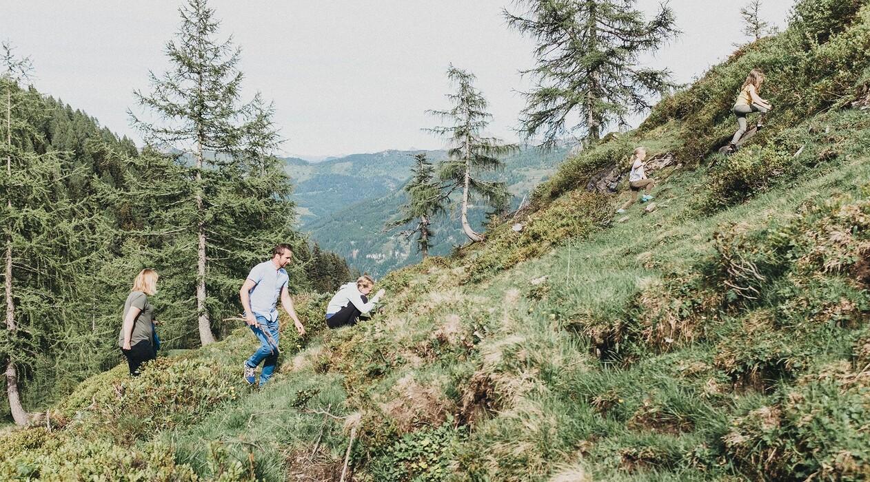 Familie beim Wandern auf der Alm im Großarltal - dem Tal der Almen.